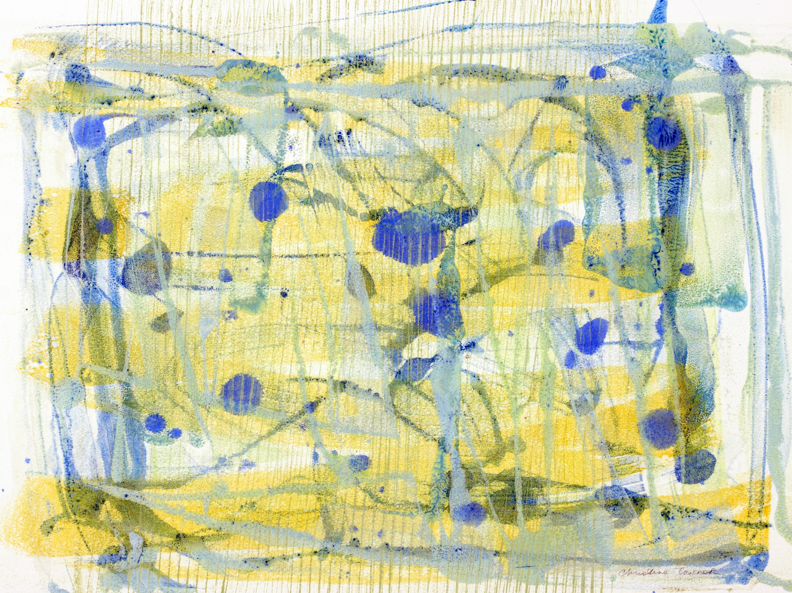 Spring Jubilation, Encaustic on Kozo Paper, 26